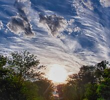 Sunset Alley by Adam Northam