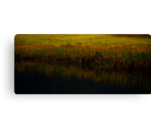 On reflection... Canvas Print