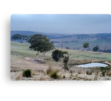 Mornings, Omeo. Canvas Print