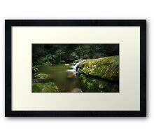 Bush Rock Garden Framed Print