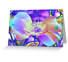 Colored Foil Poppy Greeting Card
