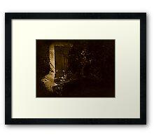 Born-Died Framed Print