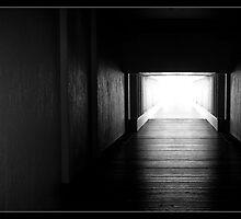 Corridor by Daral Chapman