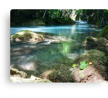 Spirit of the River Canvas Print