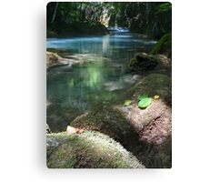 Spirit of the River, in Vertical Format Canvas Print