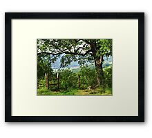 Through the Foliage Framed Print