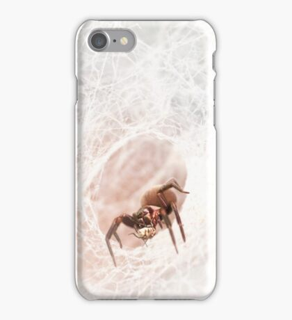 Black house spider, Western Australia  iPhone Case/Skin