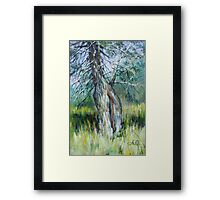 By the Spring Framed Print