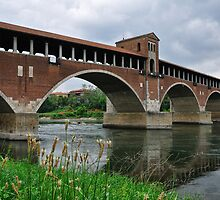 The covered bridge in Pavia (Italy) by LifePictures