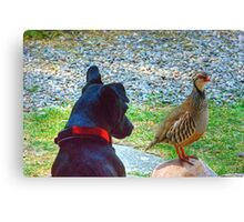 The Dog And Partridge Canvas Print