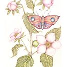 Malus Illudere et Hyacintho Luscos Papilio by Helena Wilsen - Saunders