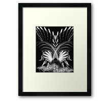 Phoenix from the Ashes Framed Print