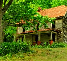 Country House by Jane Best