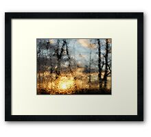 Sun Through Water Droplets Framed Print