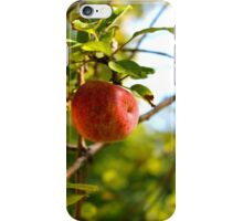 The Apple Tree iPhone Case/Skin