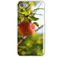 The Apple Tree iPhone Case/Skin
