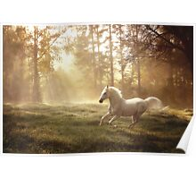 """Dreamland canter"" Poster"