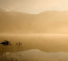 Misty reflections at sunrise by Ian Middleton