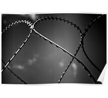 Black n white barbwire Poster