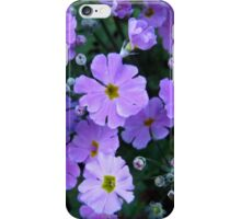 Primula Heaven iPhone Case/Skin
