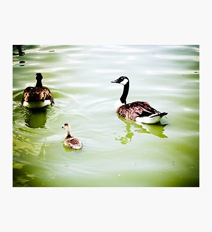 FAMILY AFFAIR Photographic Print