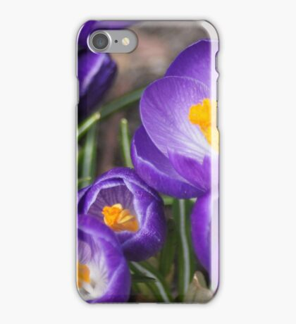 Springtime Jewels iPhone Case/Skin