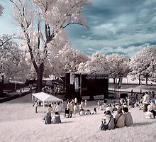 A stage in the park! by Gary Cummins
