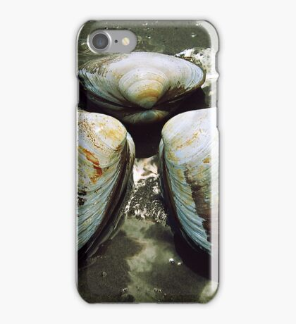 Clams iPhone Case/Skin