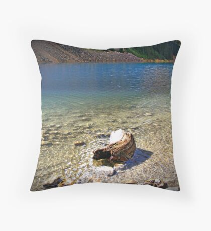 fading transparency Throw Pillow