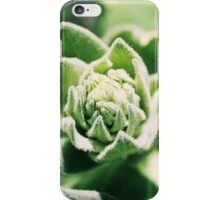 Budding Succulent iPhone Case/Skin
