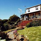 Home sweet home, Great Barrier Island.......! by Roy  Massicks