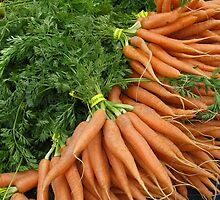 Carrots by Mary  Knoth