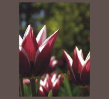 Tulips 7 One Piece - Short Sleeve