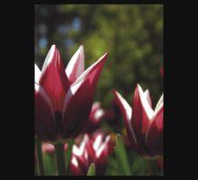 Tulips 7 Baby Tee
