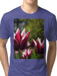 Tulips 7 Tri-blend T-Shirt