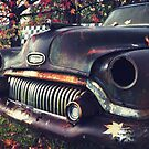 that car I've been wanting to shoot by ozzzywoman