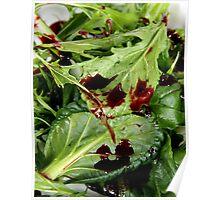 Mesclun & Vinegar Poster
