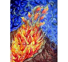 The fire flower Photographic Print