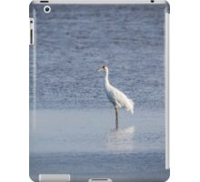 Adult Whooping Crane 2015-1 iPad Case/Skin