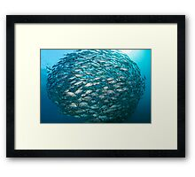 Living Ball Framed Print