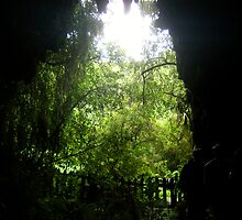 Glow Worm Caverns by cadellin