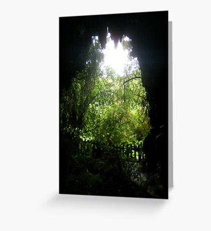 Glow Worm Caverns Greeting Card