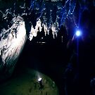 Waitomo Glow Worm Caves by cadellin