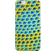 Blue-faced Angelfish  iPhone Case/Skin
