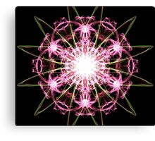 pink blast on Black Canvas Print
