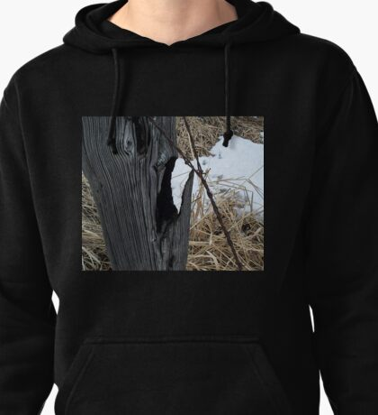 Screaming Post Pullover Hoodie