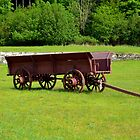 Wagon by Debbie  Maglothin