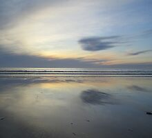 Westward Ho! by ImpAlaska