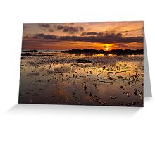 Waterscapes Greeting Card