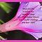 #1Enchanted Flowers - JUNE Voucher Challenge